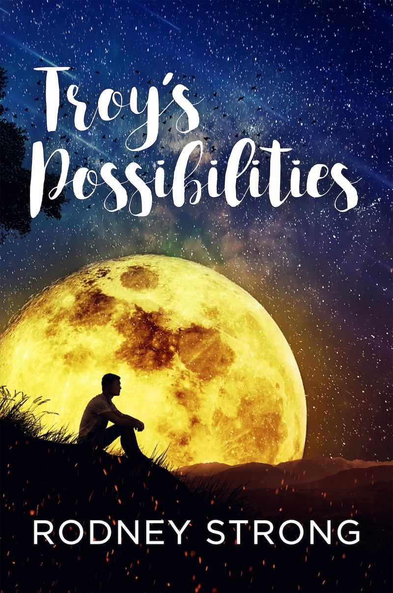 Troy's Possibilities cover